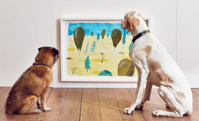 The Bark Gallery