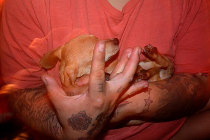 Holding Puppy by Khalid Honie of Dine' College
